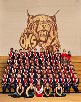 DHS Wildcat Band 2010-2011